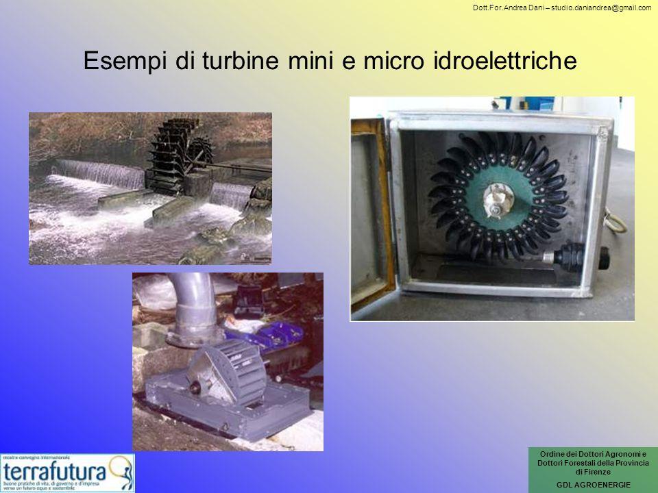 Esempi di turbine mini e micro idroelettriche Ordine dei Dottori Agronomi e Dottori Forestali della Provincia di Firenze GDL AGROENERGIE Dott.For.Andr