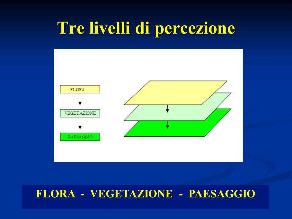 Linneo: leggere il gran libro della Natura PIANTE PIANTE Basilicata Italia Basilicata Italia specie 2500 6500 specie 2500 6500 associazioni 350 .