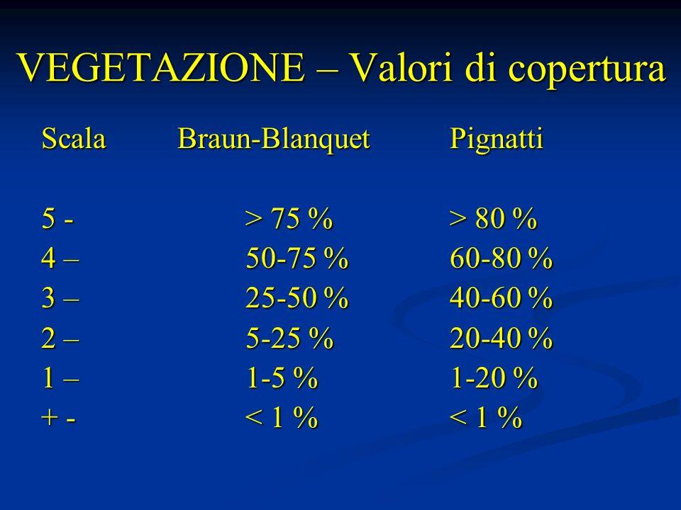 Analisi dei componenti del paesaggio 1) Papavereto (ghiaione) 50 % Seslerieto (tappeto erb.) 25 Mugheta (cespugli) 10 Nardeto (pascolo) 15 P.N.