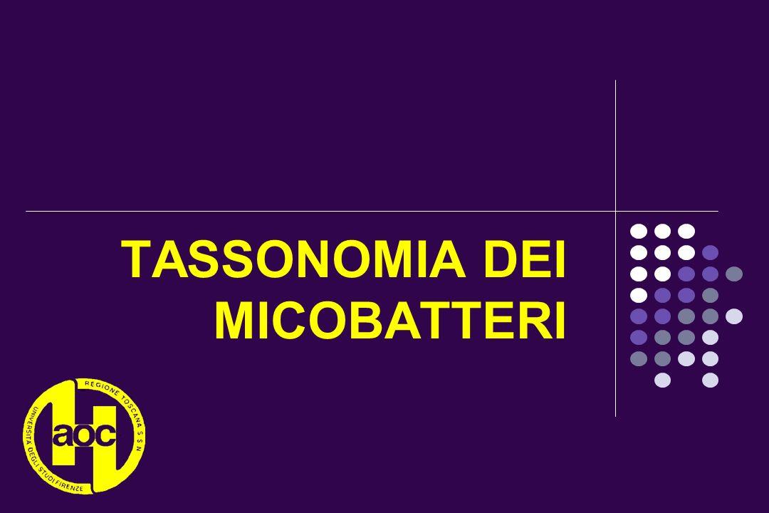 TASSONOMIA DEI MICOBATTERI