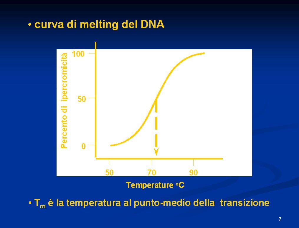 C o t 1/2 Cinetiche di riassociazione di DNA da una miscela di specie di DNA C o t 1/2 = 1 / k 2 k 2 = constante di velocità di secondo-ordine C o = concentrazione DNA t 1/2 = tempo di metà reazione 50 100 0 % DNA riassociato I I I I I I I I I log C o t veloce (ripetute) intermedia (ripetute) lenta (singola-copia) DNA genomico umano Frazioni cinetiche : veloce intermedia lenta C o t 1/2 18