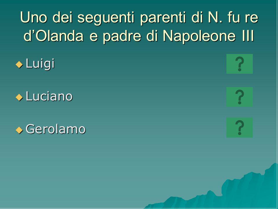 Uno dei seguenti parenti di N. fu re dOlanda e padre di Napoleone III Luigi Luigi Luciano Luciano Gerolamo Gerolamo