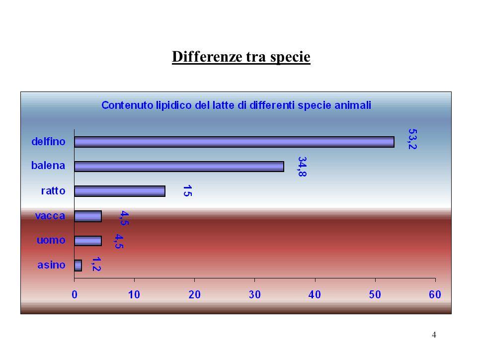 24 Contenuto lipidico della razione Laggiunta di grassi non protetti ai concentrati può favorire laumento del contenuto lipidico del latte; il valore massimo di integrazione è stato individuato nella vacca da latte nel 10% sulla SS dei concentrati mentre nelle pecore è del 5- 7%; superata tale soglia si osserva sia una riduzione della digeribilità della fibra in quanto i grassi inibiscono laccrescimento e lattività dei microrganismi sia una riduzione del livello di ingestione.