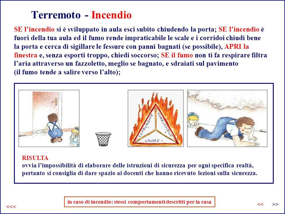 Terremoto - Incendio in caso di incendio: stessi comportamenti descritti per la casa SE lincendio si è sviluppato in aula esci subito chiudendo la por