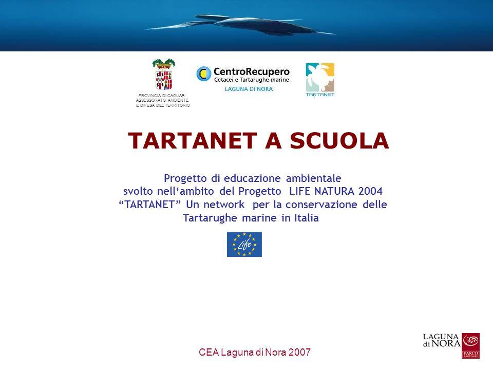 La divulgazione e la sensibilizzazione delle popolazioni locali per la tutela e conservazione della Tartaruga marina Sensibilizzare sui problemi derivanti agli habitat e alle specie dallinterazione con le attività umane Favorire la conoscenza e il rispetto della biodiversità FINALITA