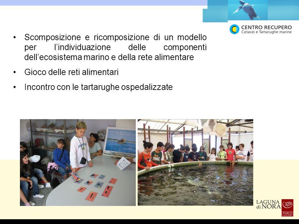 Scomposizione e ricomposizione di un modello per lindividuazione delle componenti dellecosistema marino e della rete alimentare Gioco delle reti alime