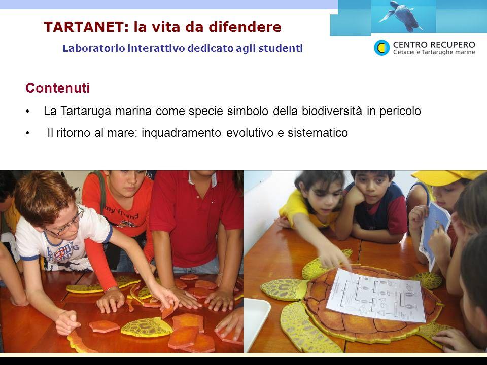 Laboratorio interattivo dedicato agli studenti TARTANET: la vita da difendere Contenuti La Tartaruga marina come specie simbolo della biodiversità in