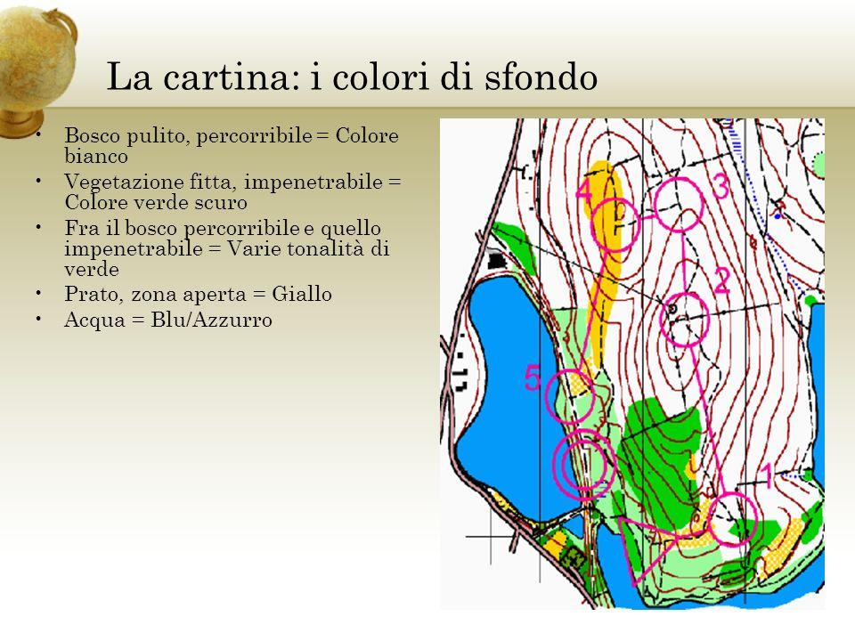 La cartina: i colori di sfondo Bosco pulito, percorribile = Colore bianco Vegetazione fitta, impenetrabile = Colore verde scuro Fra il bosco percorrib