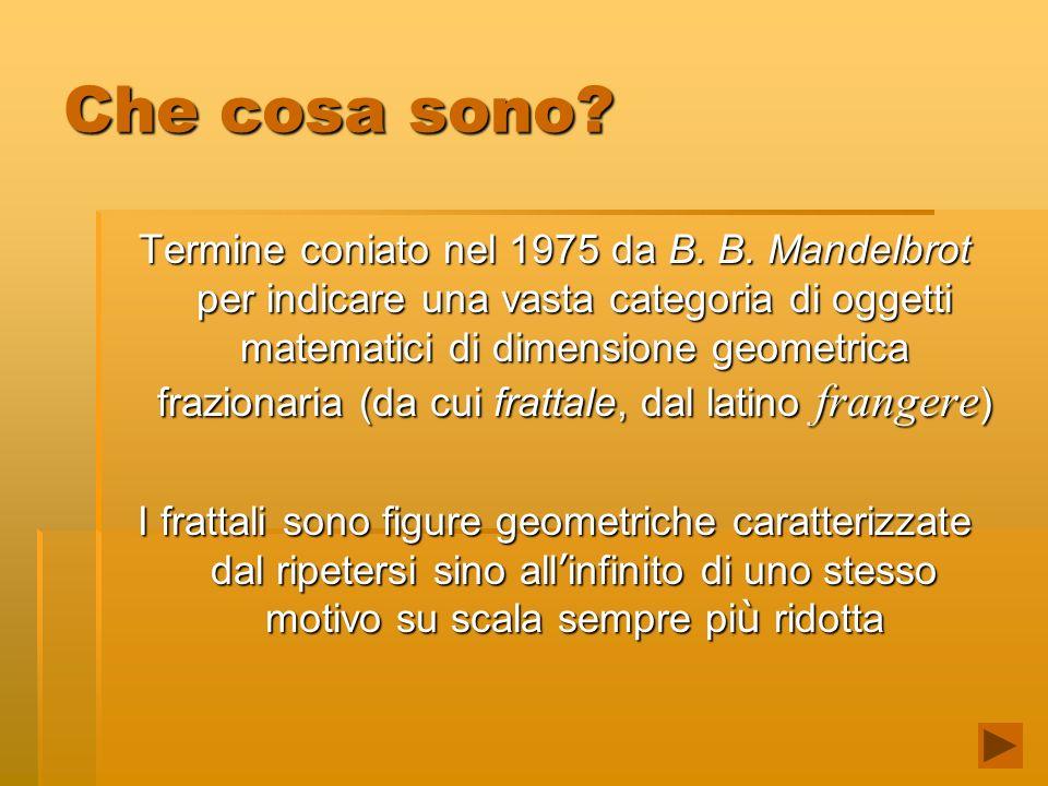 Che cosa sono? Termine coniato nel 1975 da B. B. Mandelbrot per indicare una vasta categoria di oggetti matematici di dimensione geometrica frazionari