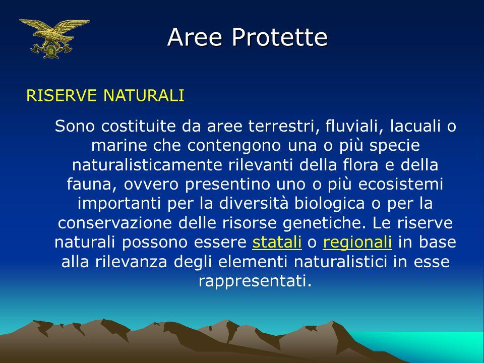 Aree Protette RISERVE NATURALI Sono costituite da aree terrestri, fluviali, lacuali o marine che contengono una o più specie naturalisticamente rileva
