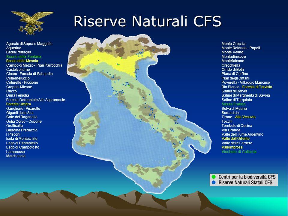 Riserve Naturali CFS Agoraie di Sopra e Maggetto Aquerino Badia Prataglia Bosco della Fontana Bosco della Mesola Campo di Mezzo - Pian Parrocchia Cast