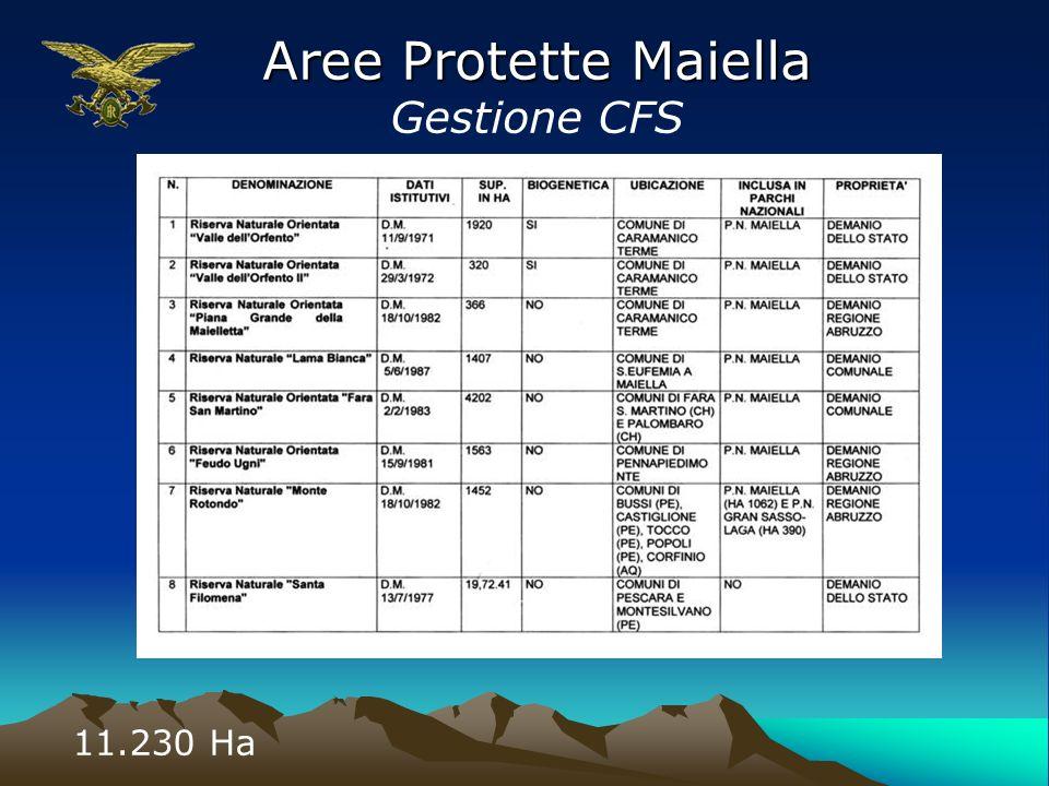 Aree Protette Maiella Gestione CFS 11.230 Ha