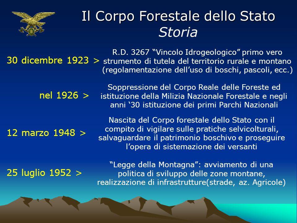 Il Corpo Forestale dello Stato Storia 30 dicembre 1923 > R.D. 3267 Vincolo Idrogeologico primo vero strumento di tutela del territorio rurale e montan