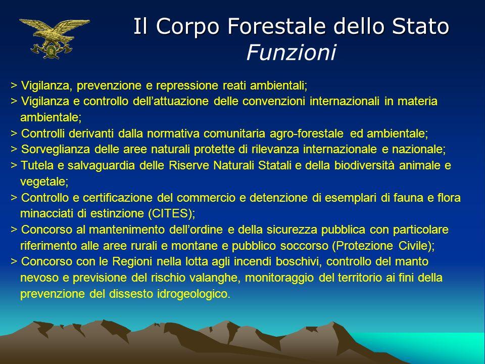 Il Corpo Forestale dello Stato Funzioni > Vigilanza, prevenzione e repressione reati ambientali; > Vigilanza e controllo dellattuazione delle convenzi
