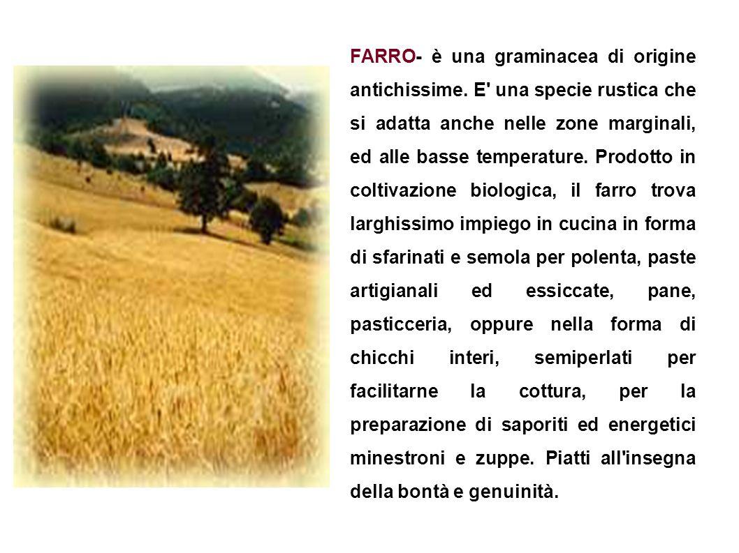 FARRO- è una graminacea di origine antichissime. E' una specie rustica che si adatta anche nelle zone marginali, ed alle basse temperature. Prodotto i
