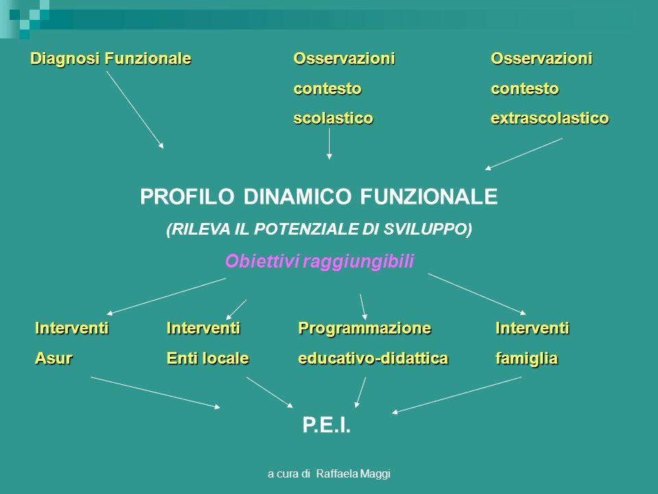 a cura di Raffaela Maggi PROFILO DINAMICO FUNZIONALE (RILEVA IL POTENZIALE DI SVILUPPO) Obiettivi raggiungibili Diagnosi FunzionaleOsservazioniOsserva
