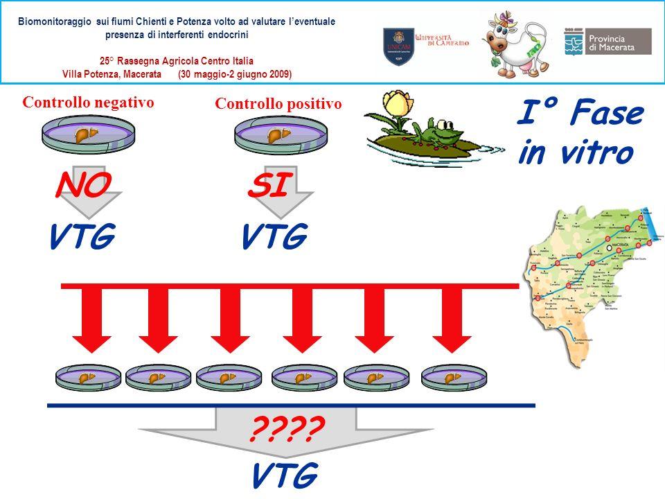 Biomonitoraggio sui fiumi Chienti e Potenza volto ad valutare leventuale presenza di interferenti endocrini 25° Rassegna Agricola Centro Italia Villa