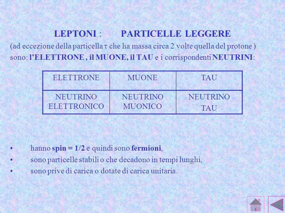 LEPTONI : PARTICELLE LEGGERE (ad eccezione della particella che ha massa circa 2 volte quella del protone ) sono: lELETTRONE, il MUONE, il TAU e i corrispondenti NEUTRINI: hanno spin = 1/2 e quindi sono fermioni, sono particelle stabili o che decadono in tempi lunghi, sono prive di carica o dotate di carica unitaria.