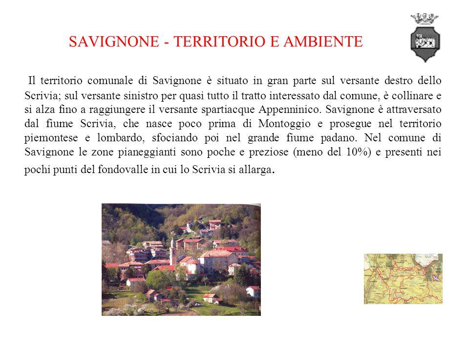 Il territorio comunale di Savignone è situato in gran parte sul versante destro dello Scrivia; sul versante sinistro per quasi tutto il tratto interessato dal comune, è collinare e si alza fino a raggiungere il versante spartiacque Appenninico.