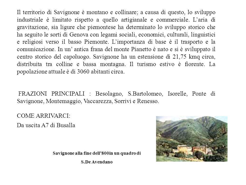 Il territorio di Savignone è montano e collinare; a causa di questo, lo sviluppo industriale è limitato rispetto a quello artigianale e commerciale.