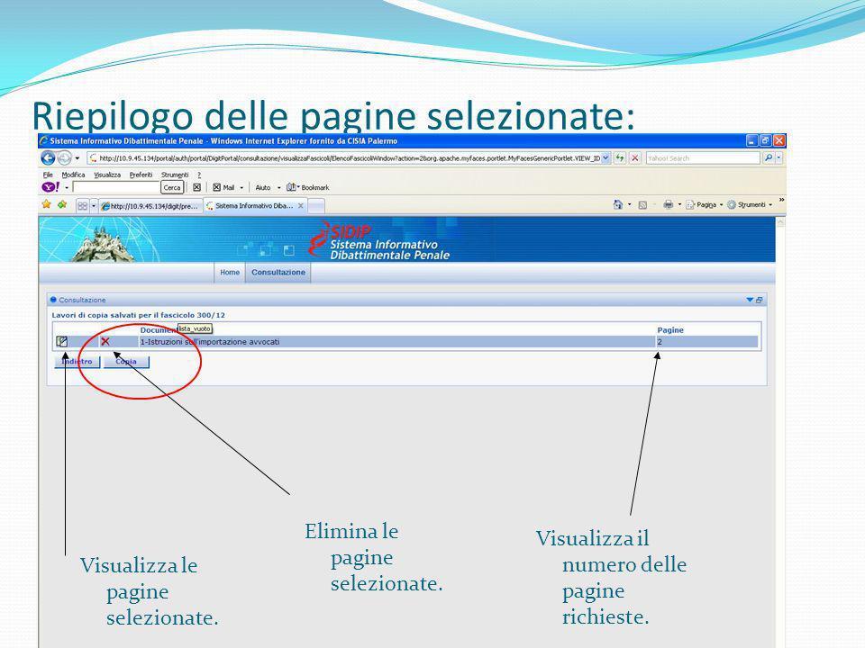 Riepilogo delle pagine selezionate: Visualizza le pagine selezionate. Elimina le pagine selezionate. Visualizza il numero delle pagine richieste.