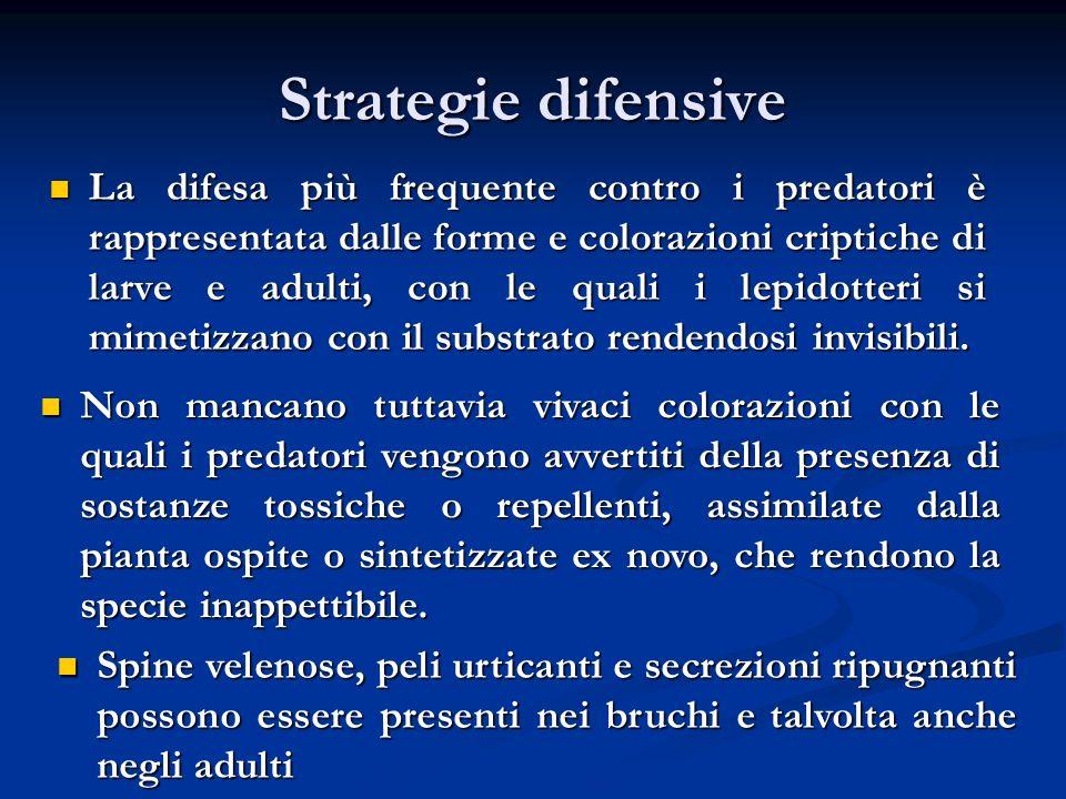 Strategie difensive La difesa più frequente contro i predatori è rappresentata dalle forme e colorazioni criptiche di larve e adulti, con le quali i l