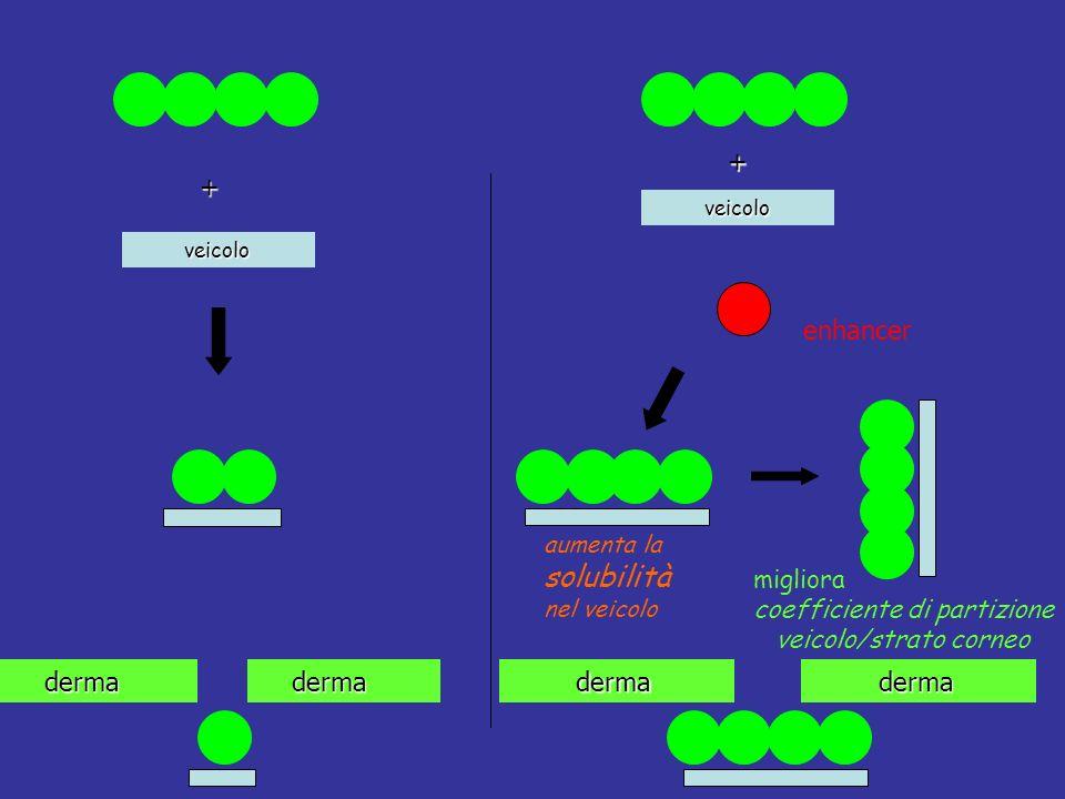 derma derma aumenta la solubilità nel veicolo migliora coefficiente di partizione veicolo/strato corneo derma derma veicolo veicolo + enhancer +