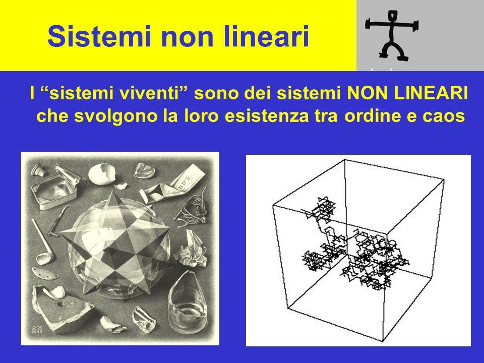 Sistemi non lineari I sistemi viventi sono dei sistemi NON LINEARI che svolgono la loro esistenza tra ordine e caos