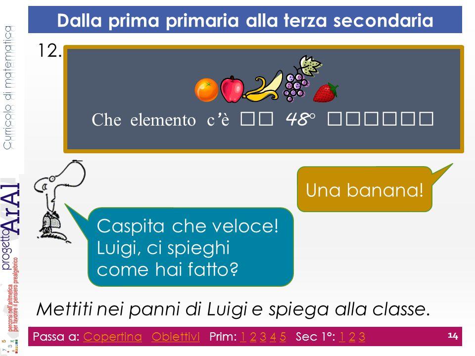12. Mettiti nei panni di Luigi e spiega alla classe.