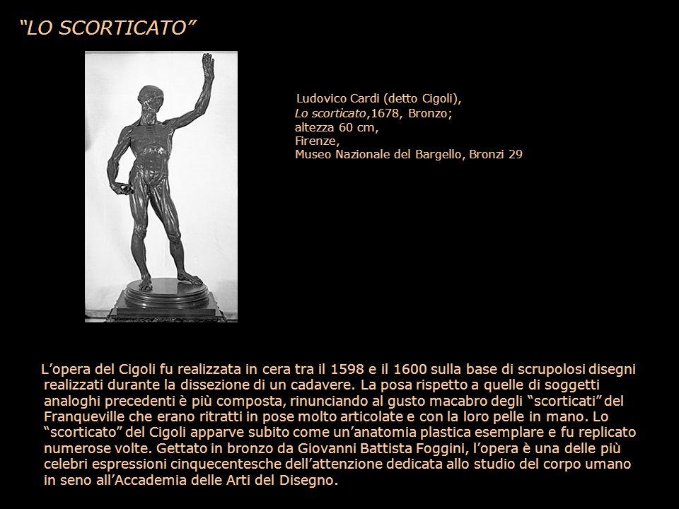 LO SCORTICATO Ludovico Cardi (detto Cigoli), Lo scorticato,1678, Bronzo; altezza 60 cm, Firenze, Museo Nazionale del Bargello, Bronzi 29 Lopera del Ci