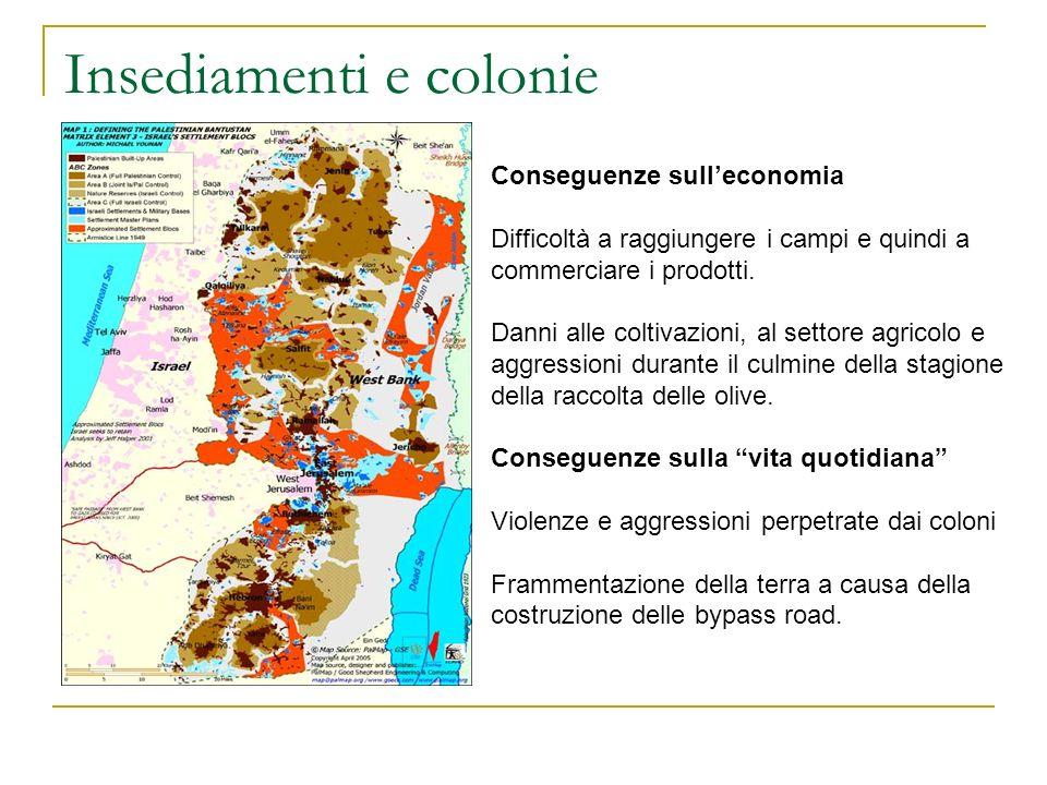 Insediamenti e colonie Conseguenze sulleconomia Difficoltà a raggiungere i campi e quindi a commerciare i prodotti. Danni alle coltivazioni, al settor