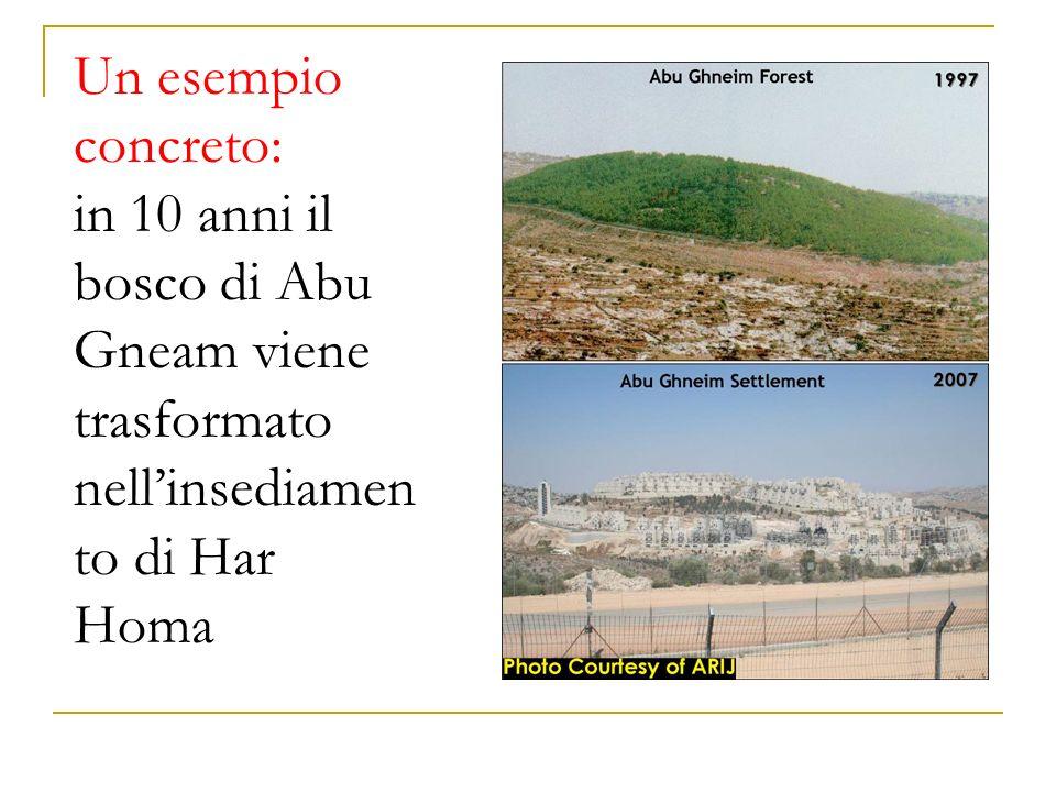 Un esempio concreto: in 10 anni il bosco di Abu Gneam viene trasformato nellinsediamen to di Har Homa