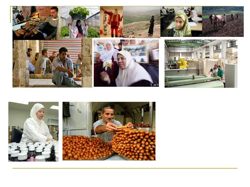 Restrizioni di Movimento CONSEGUENZE SUI PALESTINESI Effetti sulleconomia Difficoltà a raggiungere i campi e quindi a commerciare i prodotti.