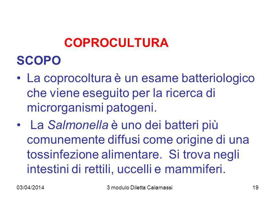 03/04/20143 modulo Diletta Calamassi19 COPROCULTURA SCOPO La coprocoltura è un esame batteriologico che viene eseguito per la ricerca di microrganismi