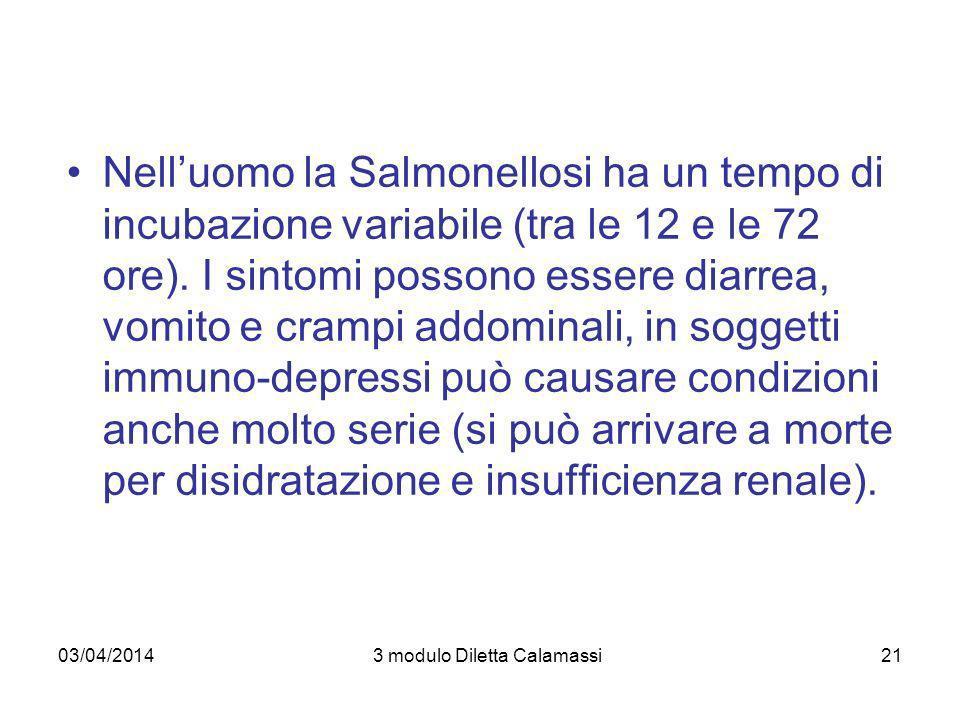 03/04/20143 modulo Diletta Calamassi22 Le fonti di contagio sono rappresentate dallingestione di alimenti contaminati (prevalentemente carne e uova non cotte o poco cotte) e dal contatto con persone infette (trasmissione oro-fecale)