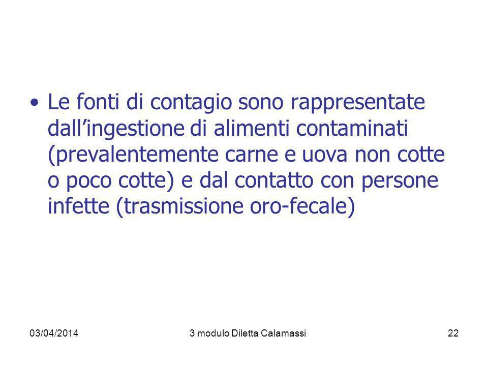 03/04/20143 modulo Diletta Calamassi22 Le fonti di contagio sono rappresentate dallingestione di alimenti contaminati (prevalentemente carne e uova no
