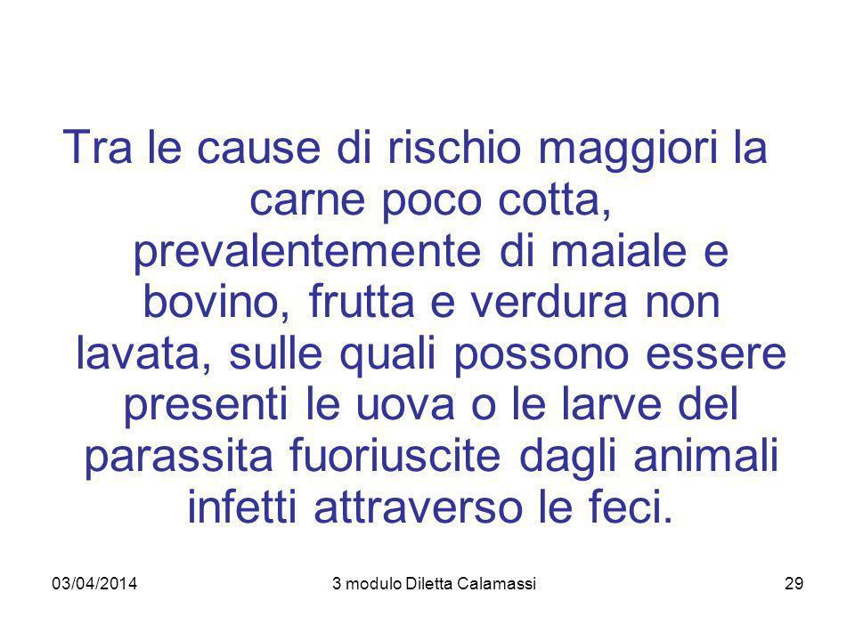 03/04/20143 modulo Diletta Calamassi29 Tra le cause di rischio maggiori la carne poco cotta, prevalentemente di maiale e bovino, frutta e verdura non