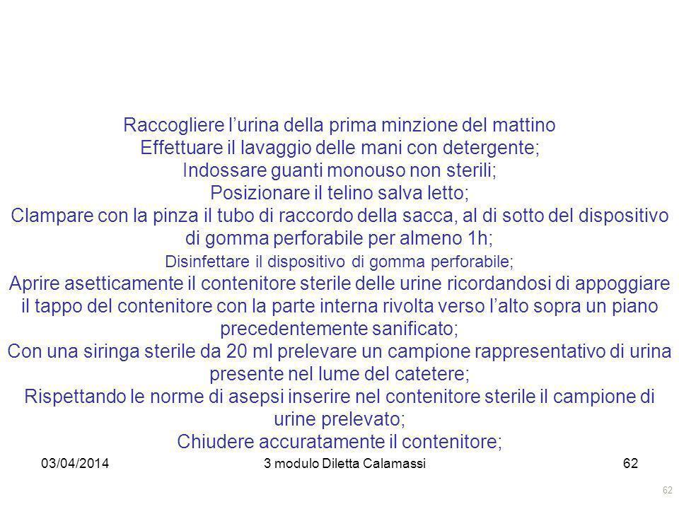 03/04/20143 modulo Diletta Calamassi62 Raccogliere lurina della prima minzione del mattino Effettuare il lavaggio delle mani con detergente; Indossare