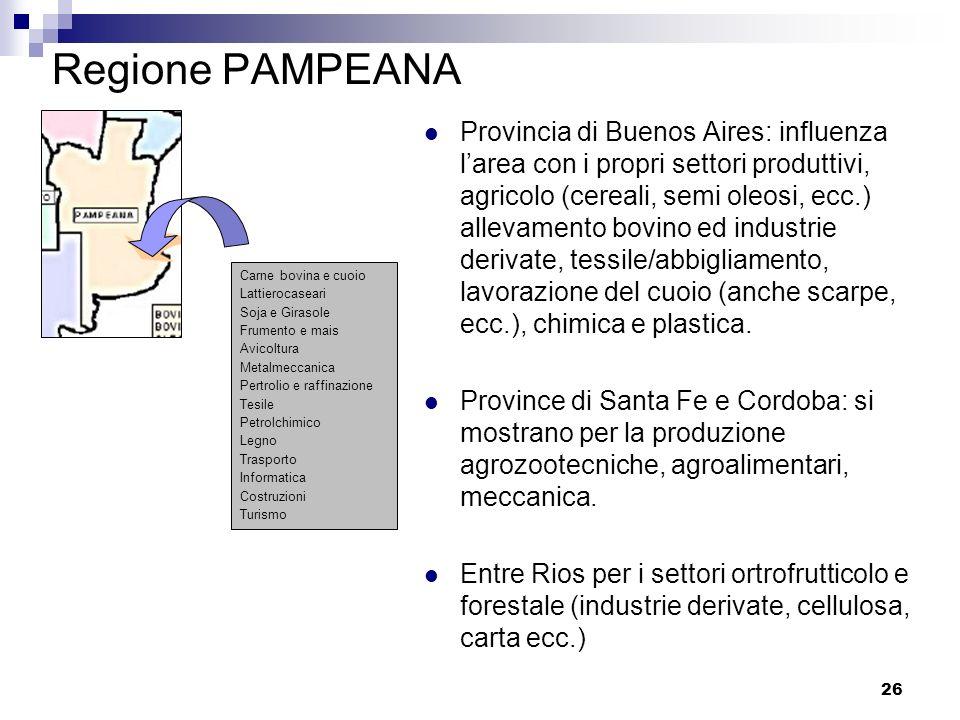 26 Regione PAMPEANA Provincia di Buenos Aires: influenza larea con i propri settori produttivi, agricolo (cereali, semi oleosi, ecc.) allevamento bovi