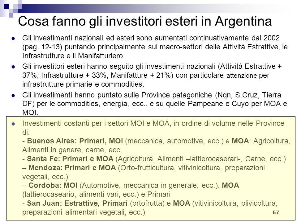 57 Cosa fanno gli investitori esteri in Argentina Gli investimenti nazionali ed esteri sono aumentati continuativamente dal 2002 (pag. 12-13) puntando
