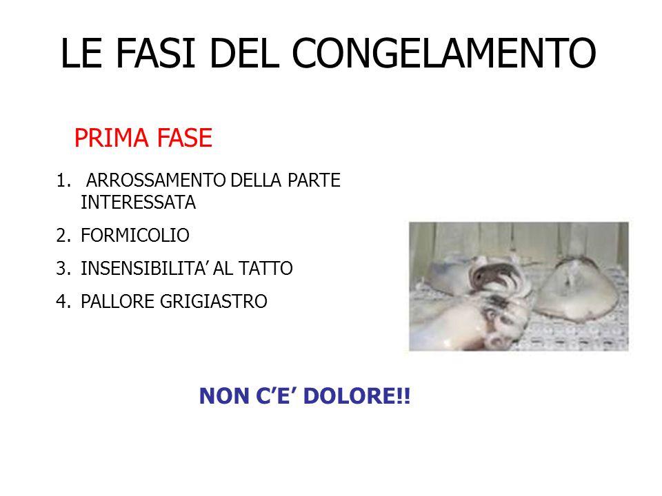 LE FASI DEL CONGELAMENTO PRIMA FASE 1. ARROSSAMENTO DELLA PARTE INTERESSATA 2.FORMICOLIO 3.INSENSIBILITA AL TATTO 4.PALLORE GRIGIASTRO NON CE DOLORE!!