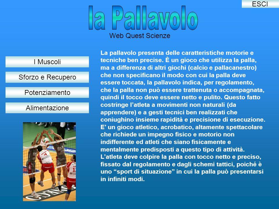 Web Quest Scienze I Muscoli Sforzo e Recupero Alimentazione Potenziamento La pallavolo presenta delle caratteristiche motorie e tecniche ben precise.