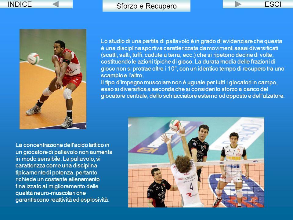 INDICE Sforzo e Recupero Lo studio di una partita di pallavolo è in grado di evidenziare che questa è una disciplina sportiva caratterizzata da movime