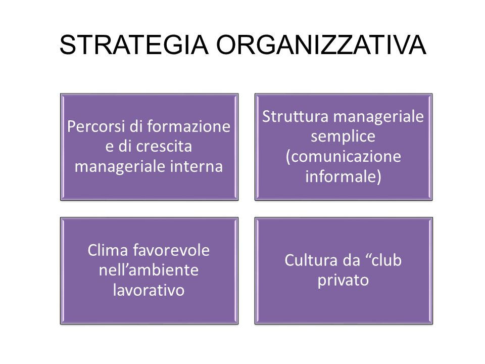 STRATEGIA ORGANIZZATIVA Percorsi di formazione e di crescita manageriale interna Struttura manageriale semplice (comunicazione informale) Clima favore