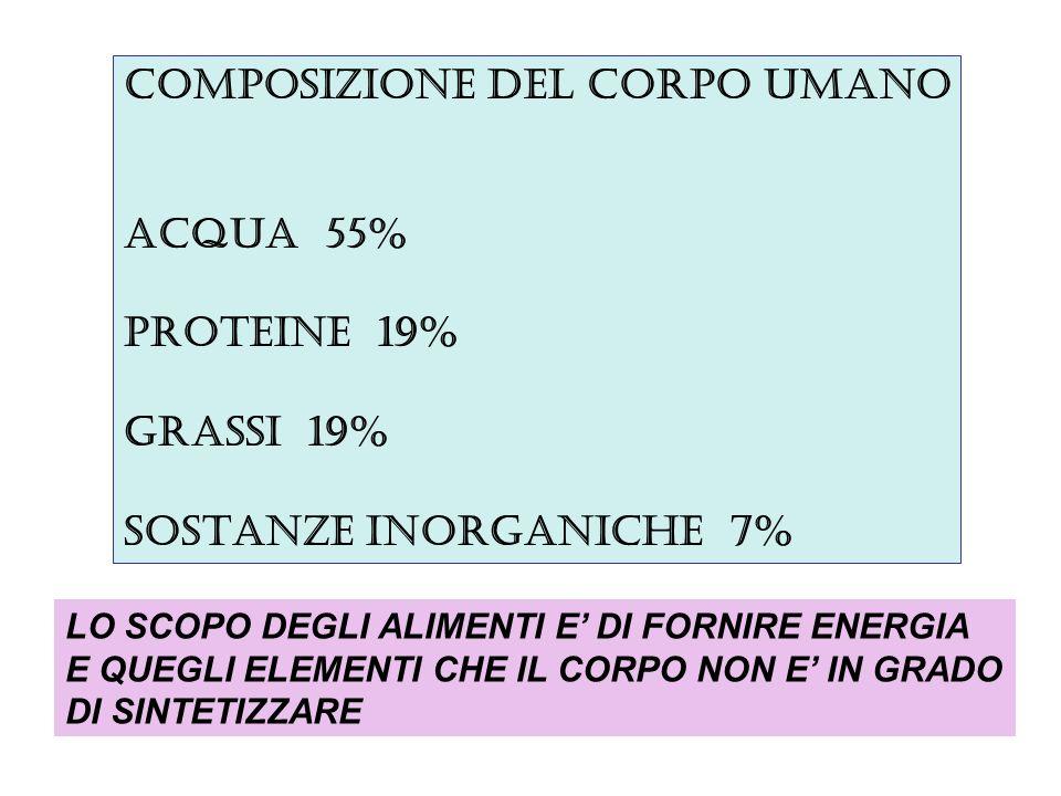 COMPOSIZIONE DEL CORPO UMANO ACQUA 55% PROTEINE 19% GRASSI 19% SOSTANZE INORGANICHE 7% LO SCOPO DEGLI ALIMENTI E DI FORNIRE ENERGIA E QUEGLI ELEMENTI