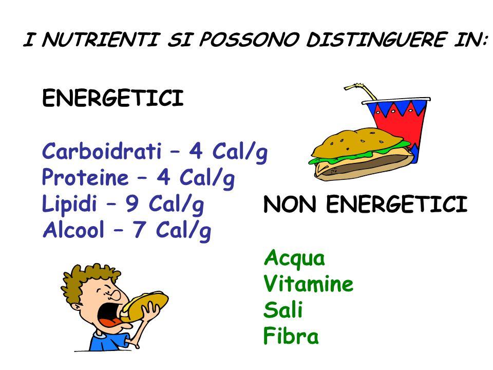 I NUTRIENTI SI POSSONO DISTINGUERE IN: ENERGETICI Carboidrati – 4 Cal/g Proteine – 4 Cal/g Lipidi – 9 Cal/g Alcool – 7 Cal/g NON ENERGETICI Acqua Vita