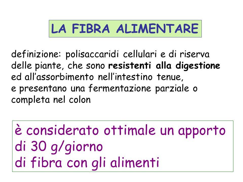 LA FIBRA ALIMENTARE definizione: polisaccaridi cellulari e di riserva delle piante, che sono resistenti alla digestione ed allassorbimento nellintesti