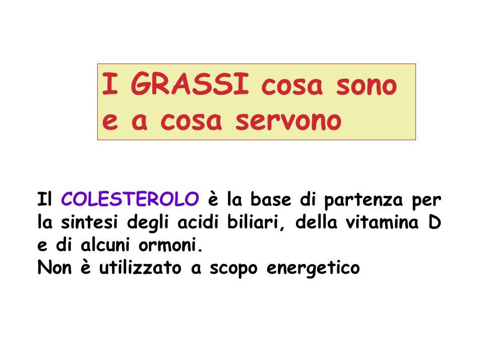 Il COLESTEROLO è la base di partenza per la sintesi degli acidi biliari, della vitamina D e di alcuni ormoni. Non è utilizzato a scopo energetico I GR