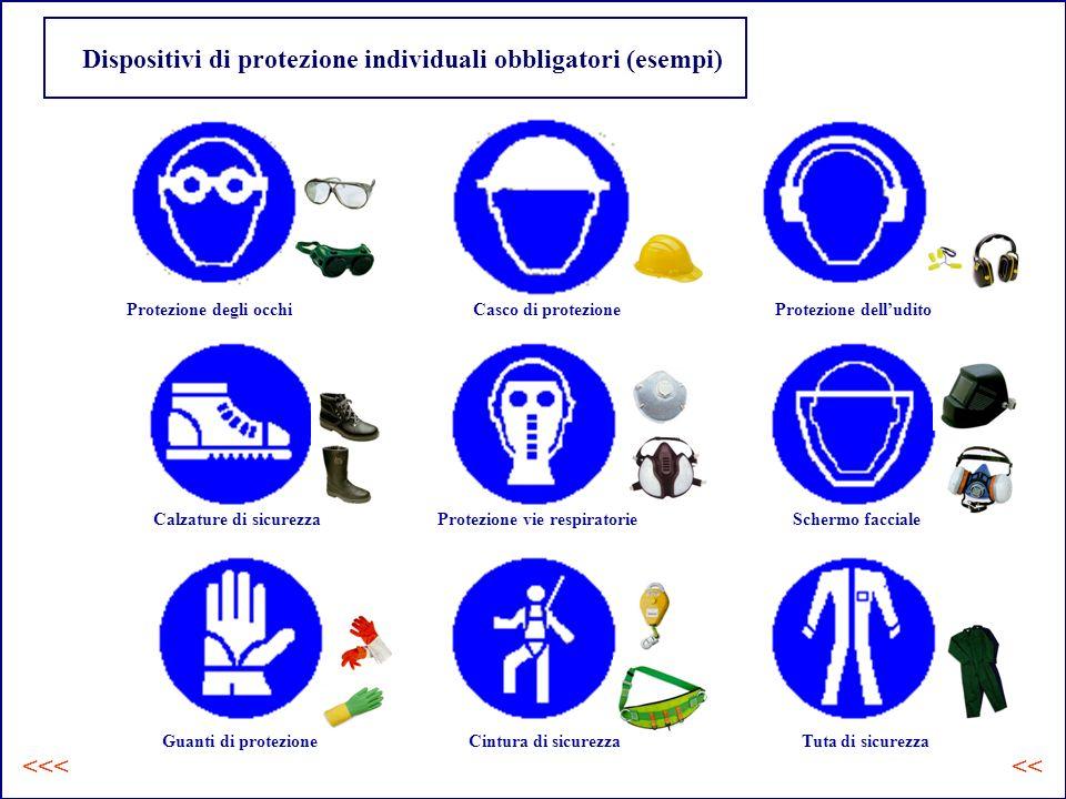 Dispositivi di protezione individuali obbligatori (esempi) Protezione degli occhiCasco di protezioneProtezione delludito Calzature di sicurezzaProtezione vie respiratorieSchermo facciale Guanti di protezioneCintura di sicurezzaTuta di sicurezza <<<<<