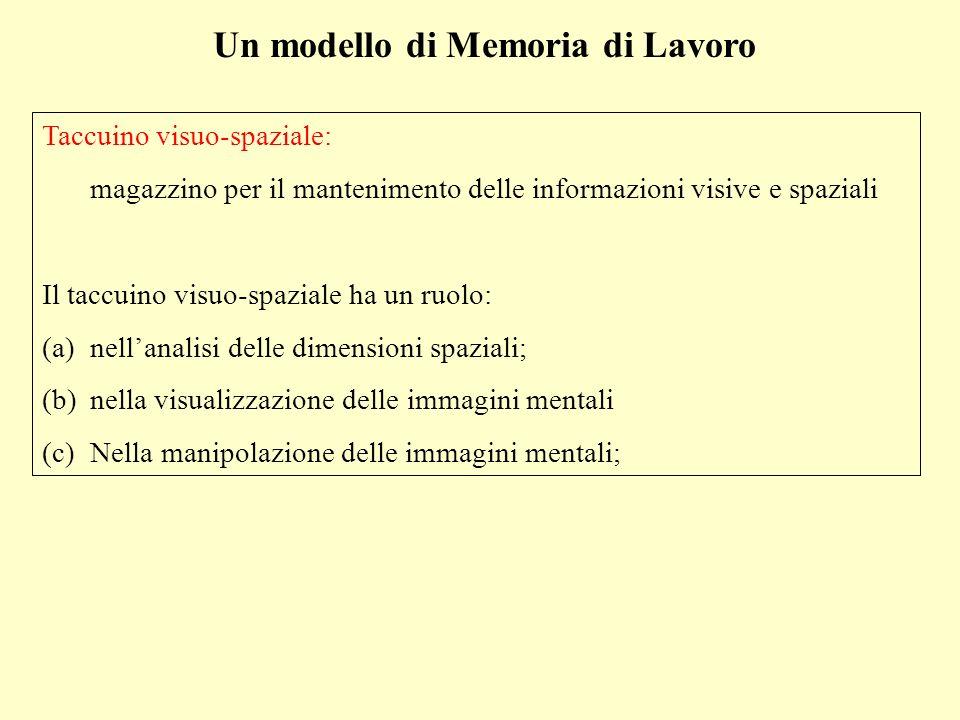 Un modello di Memoria di Lavoro Taccuino visuo-spaziale: magazzino per il mantenimento delle informazioni visive e spaziali Il taccuino visuo-spaziale